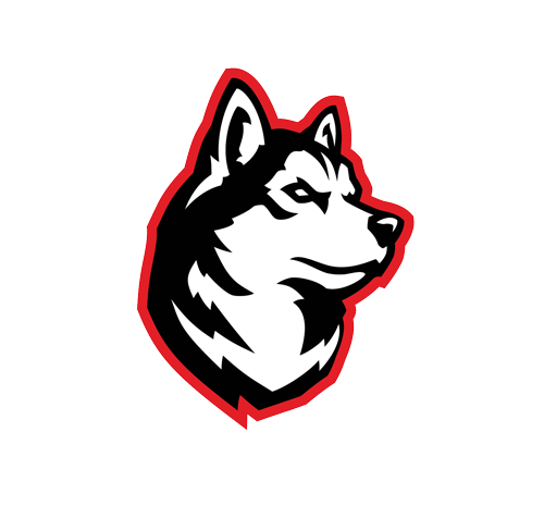 Northeastern University Esports